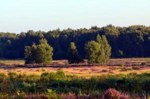 Landschaft NRW